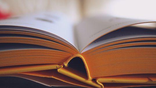 book-bookstore-college-261821